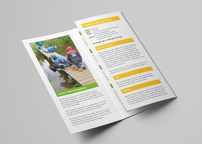 Klare Linien || Portfolio || MTK Natur || Flyer & Word-Vorlagen